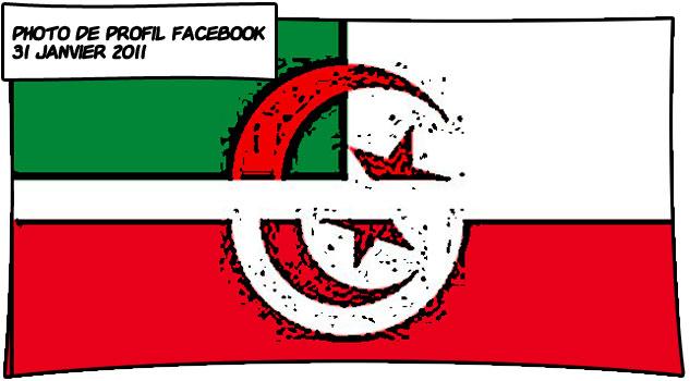 mix drapeaux Algérie Tunisie